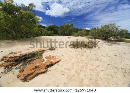 Landscape of Kakadu