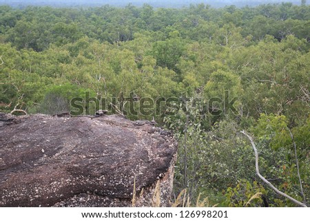 Landscape of Kakadu National Park, Australia