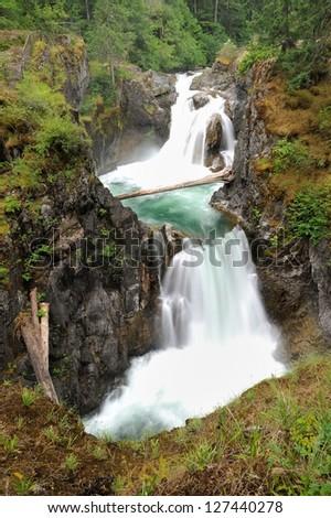 landscape of little qualicum falls provincial park, vancouver island, bc, canada