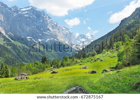 Landscape of meadows and mountains in the Alps Switzerland #672875167