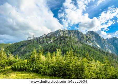 Landscape of mountains in spring, green forest and blue sky, Tatras, Carpathians, Poland #548820634