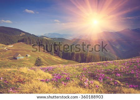 landscape of mountains. view of ...