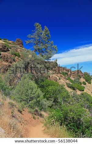 Landscape of Mt Diablo State Park, North California