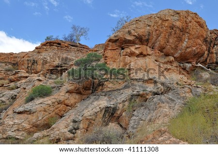 landscape of Mupungubwe nature reserve, South Africa