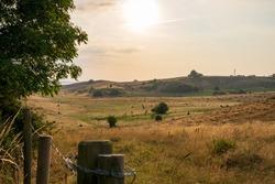 Landscape of nature reserve Hilleshogs dalar during summer in south part of Sweden. Selective focus.