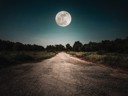 Landscape of night sky and bright full moon above wilderness area. Asphalt road leading into the forest at night. Serenity background.