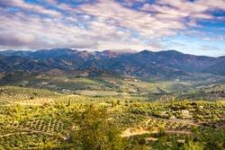 Landscape of olive trees in La Iruela, Sierra de Cazorla, Jaen, Andalusia, Spain.