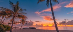 Landscape of paradise tropical island beach, sunrise sunset view. Exotic scenery, palm trees, soft sand and calm sea. Summer beach landscape, vacation or tropical travel sunset colors clouds horizon