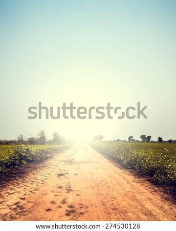 landscape of road way in summer ...