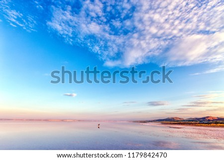Landscape of Salt Lake. Salt Lake ( Turkish: Tuz Golu meaning Salt Lake ) is the second largest lake in Turkey with its 1,665 km2 surface area and one of the largest hypersaline lakes in the world.