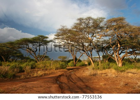 Landscape of Samburu before storm, Samburu, Kenya - stock photo