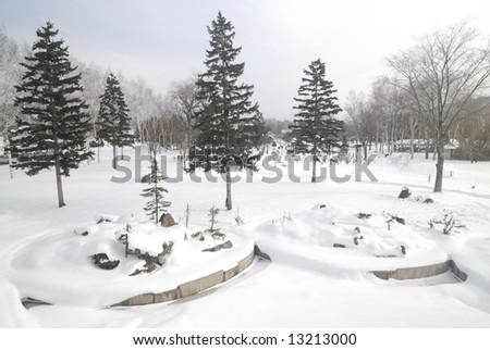 Landscape of snow covered field, taken in Hokkaido Japan