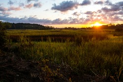 Landscape of south carolina low country marsh at sunrise with cloudy sky