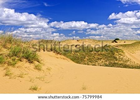 Landscape of Spirit Sands dunes in Spruce Woods Provincial Park, Manitoba, Canada