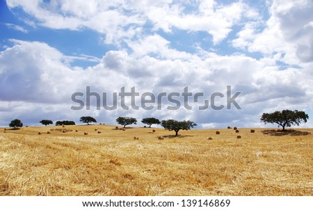 Landscape of straw field at Portugal