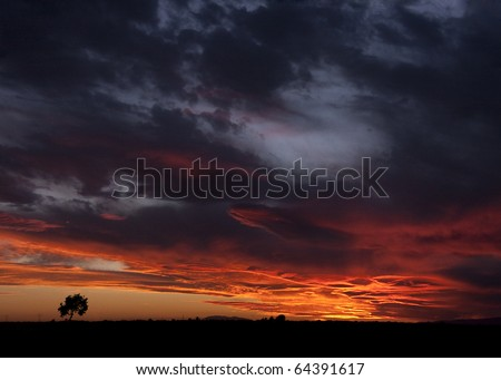 landscape of sunset with cloudy orange sky and a small lonely silhouette of tree