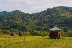 Landscape of the Cemetery of Sapanta (Romania)
