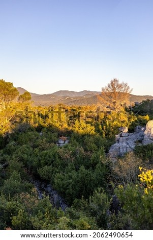 Landscape of the Mer de Rochers at sunrise, in the Cevennes foothills of Sauve Photo stock ©