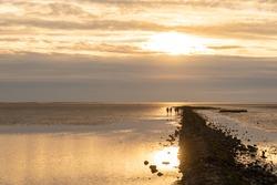 Landscape of the National Park Wadden Sea by Dorum-Neufeld in Lower Saxony in Germany