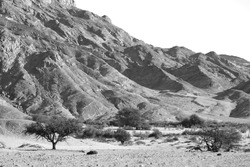 Landscape of the Swakop Riverbed