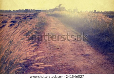 Landscape of vintage nature background, morning in the countryside Street (sepia color tone image)