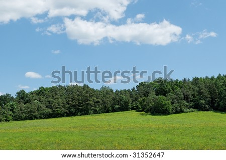 Landscape of Walloon, Belgium - green hills and forest in clear summer day