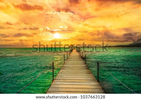 Landscape of wooden bridge in Trou d'eau douce, Mauritius