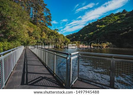 landscape of Zealandia, the world's first fully-fenced urban ecosanctuary #1497945488