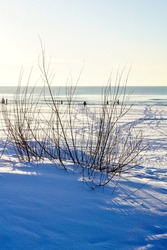 landscape on a sunny winter day on the Baltic coast