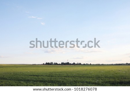 Landscape outside the city. Grassy field and blue sky. Sunset over the village field