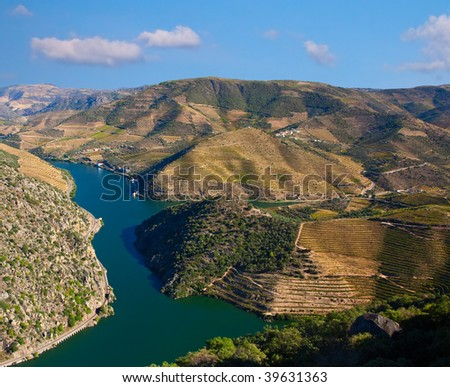 Landscape Photo : Beautiful view over the Port Wine vineyards in the Douro Region, by the river, in Portugal on Fall / Autumn.
