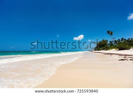 Landscape photo of beautiful white sand exotic beach in Kenya Africa