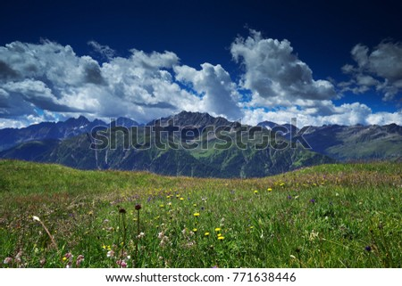 Landscape Picture of Alpine meadow in early summer, full of blooming flowers, best as a grazing land for alpine cows or sheep. Picture taken in sunny morning with white clouds and high mountains.