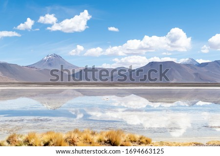 Photo of  Landscape reflection in The Salar de Aguas Calientes Lagoon, San Pedro de Atacama, Chile