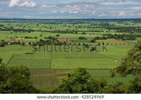 Landscape rice fields with beautiful cloud on the sky in the up country of Thailand.  #428524969