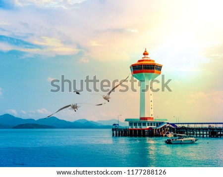Landscape scenery of lighthouse tower at end of pier during sunset with foreground of flying seagulls #1177288126