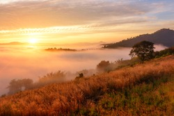 Landscape sea of misty in dawn morning sunrise time at phu lam duan, Loei province,Thailand