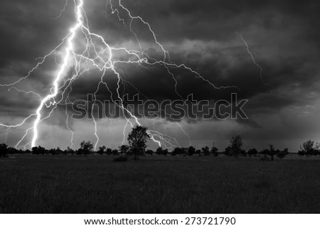 Landscape showing meadow and trees during summer storm with thunder and lightnings.