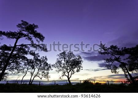 landscape silhouette at Phu Soi Dao national park Thailand