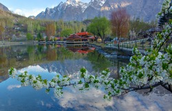 landscape spring , blossom photos of skardu , hunza and gilgit baltistan , Pakistan
