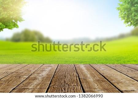 Landscape Terrace Bokeh with green Meadow #1382066990