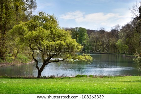 Landscape. The lake in the park. #108263339