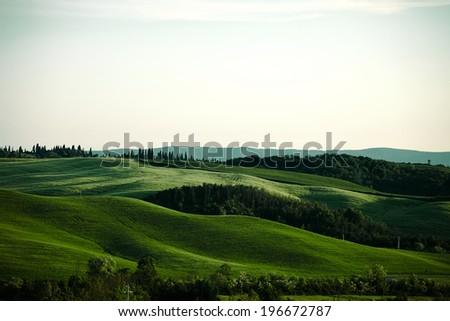 Landscape Tuscany Italy - Shutterstock ID 196672787