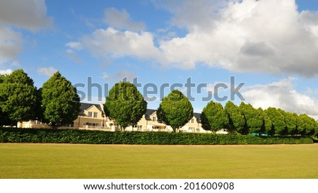 Landscape View a Lawn, Tree Row and Hedge in a Beautiful City Park