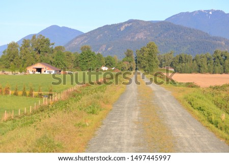 Landscape view of a rural country road during harvest season in the late summer months.  #1497445997