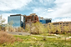 Landscape view of Commons Park with apartments and office buildings in the distance in lower Downtown Denver, Colorado