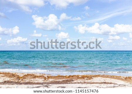 Landscape view of Juno Beach in Jupiter, Florida, sunny day, turquoise water, sand, nobody, seaweed, cloudy sky, atlantic ocean