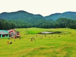 Landscape view of Khajjiar gound
