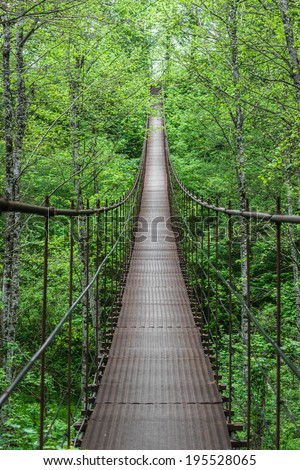 Landscape view of Long Steel Suspension bridge in Russian Mountains #195528065