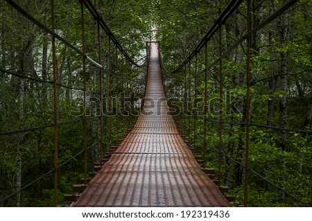 Landscape view of Long Steel Suspension bridge in the forest #192319436